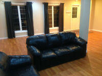 Beautiful Large walkout basement for rent immediately