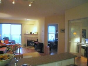 Lovely 1 bd/den furnished waterview condo
