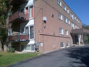 1 Bedroom Unit 5 min drive to Queens/Hospital – Available Feb 1