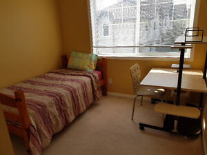 Daily or Weekly Room Rental