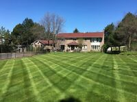 Landscapers needed for lawn cutting asap