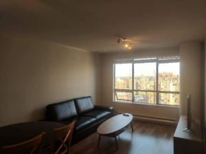 A fully furnished sub-penthouse downtown apartment- Sept 15th- $