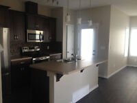Beautiful New Duplex with 2 Master Suites