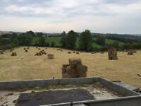 Small square bales of hay well packed