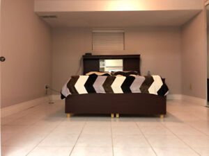 Newly finished 1 Bedroom basement for Rent in Brampton