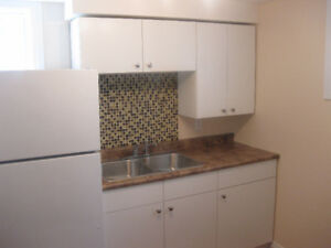 Free Rent-10627 76 Ave-Basement Suit-Fully Renovated-South Side