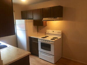 Newly renovated and appliances 1500 sq ft townhouse (Dec 15th)
