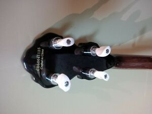 fender banjo with case, new strap and extra set of strings Cambridge Kitchener Area image 5