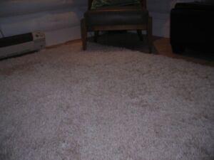 area rug 5.5'x8'