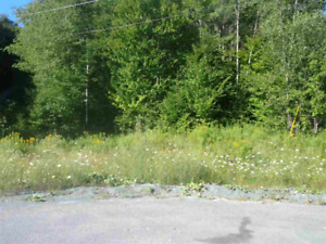 1.68 acre building lot in Beaver Bank...trades considered