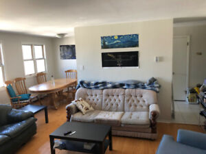 1 BR in 2 BR Apartment! Close to Dalhousie and busses! May 2019