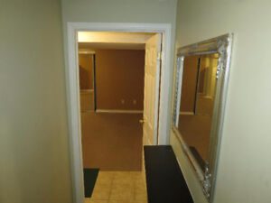 *1 bedroom Brampton basement apartment for rent*