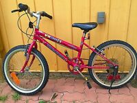 20 inch 6 Speed Red bicycle all work great $45
