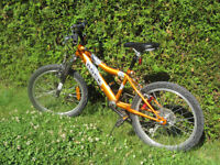 Raleigh Boys, 6 speed, with front shocks