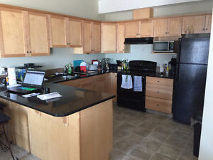 College student in need of roommate in Southlands