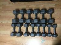dumbbells (2 x 10, 15, 20, 25, 30, 35, 40 lbs)