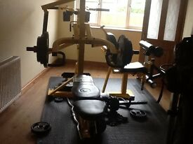 Powertec work bench (multi gym)