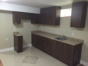3 BedRoom Brand New Basement ( Mississauga Rd & Steeles)