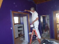 Quality painting and handyman services 780 910-5879