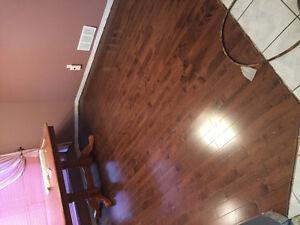 Professional Hardwood/Laminate