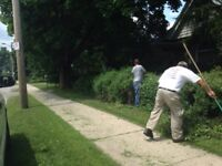fall clean ups lawn-man-landscapers