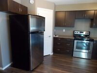 Two Bedroom Condo in Clearview Meadows for Rent