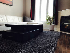 Fully furnished luxurious townhouse