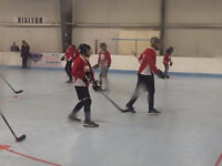 NHL sized ball hockey rink or gym rental specials! Book now!