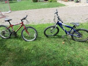 Boys Youth Bikes, Norco and Trek, 20""