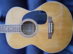 Magnum 6 String Acoustic Kingston Kingston Area image 8