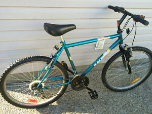 Raleigh mountain bike 15 speed