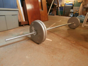 Barbell with 100lbs of Weights
