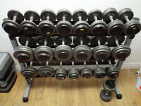 Commercial Prostyle Dumbbells 20lbs to 70lbs + Dumbbell Rack