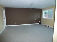 June 1st- Bright 2 Bedroom above ground lower suite