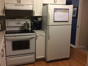 Convection oven and fridge