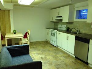 1 basement bedroom near U of C and SAIT,Banff Trail C-train