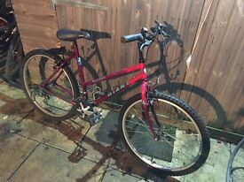 Giant Hollywood Ladies Bike. Serviced, Free Lights/Lock/Delivery