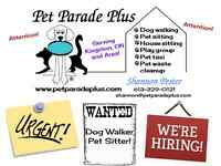 URGENT - Dog Walker / Pet Sitter Position