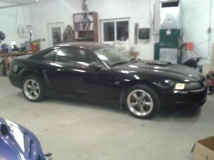 Rare!!!!!! 2001 Black Ford Mustang Bullitt Coupe (2 door)