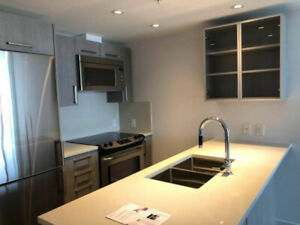 Luxury 1 Bed 1 Bath 1 Flex Near Downtown Vancouver