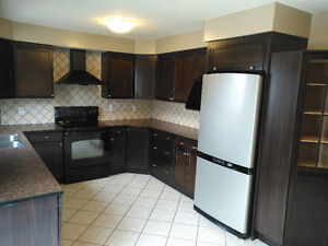 Updated home with a pool Kitchener / Waterloo Kitchener Area image 7