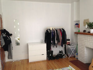Montreal Sublet from May 15th-July 1st (length negotiable)