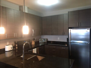 Beautiful Top Floor 1 Bedroom Fully Furnished Unit