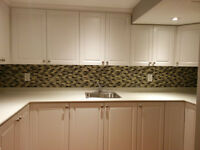 Beautiful Newly Renevated Bsmt Apartment for Rent!!!