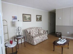 Furnished accomodations for temp rental