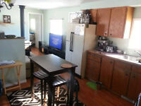 Nice 1 Bedroom Trailer by the Salmo River