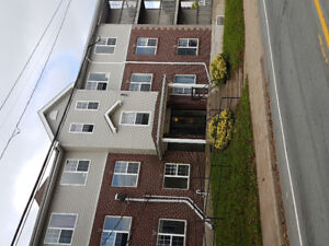 Avail. NWdsor St. beautiful newer large 2 bedroom unit $1175