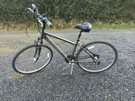 Adult bike Carrera Crossfire