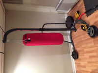 Century Heavy Bag Stand with Bag For Sale
