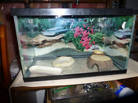 reptile cage with everything